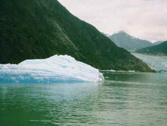 Tracy Arm is a beautiful fjord that we'll explore as part of our Alaska Inside Passage Cruise